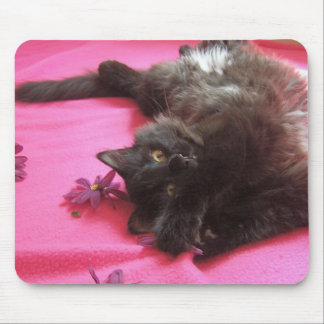 silly gal mouse pad