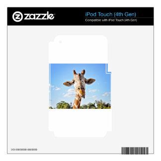 Silly Giraffe iPod Touch 4G Skin