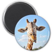 Silly Giraffe Magnet