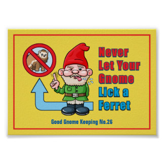 Silly Gnome And Ferret Poster
