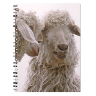 Silly Goats Photo Notebook