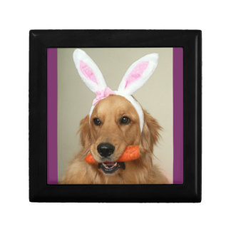 SIlly Golden Retriever dog with Easter Bunny ears Gift Box