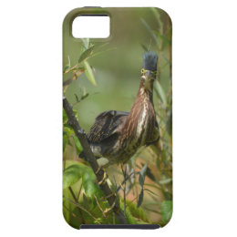 Silly Green Heron Phone Case