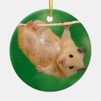 silly hampster ceramic ornament