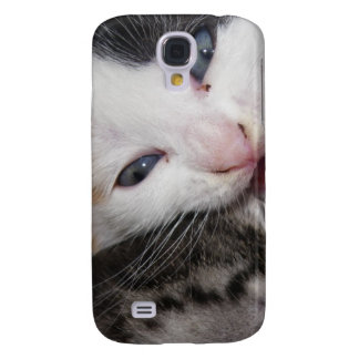 Silly Kitty HTC Vivid Cases