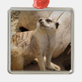 Silly Meerkat Square Metal Christmas Ornament