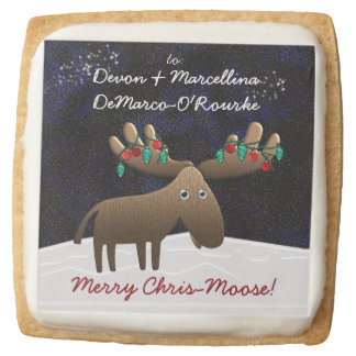 Silly Moose With Christmas Lights (Personalized) Square Shortbread Cookie