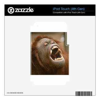 silly orangutan skins for iPod touch 4G