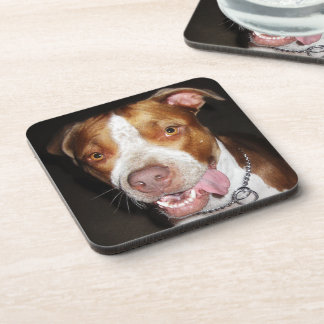 Silly Pitbull Portrait Beverage Coaster