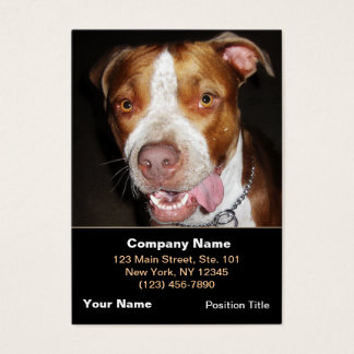Silly Pitbull Portrait Business Card