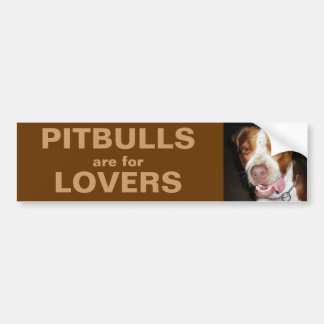 Silly Pitbull Portrait Car Bumper Sticker