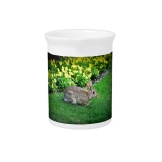 Silly Rabbit Drink Pitcher