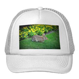 Silly Rabbit Trucker Hat