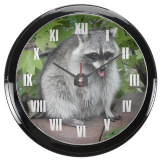 Silly Raccoon Posing Aqua Clock