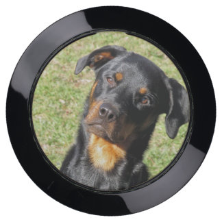Silly Rottweiler ChargeHub