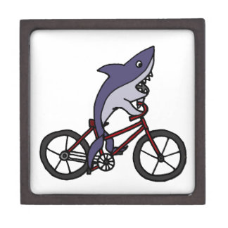 Silly Shark Riding Bicycle Cartoon Keepsake Box