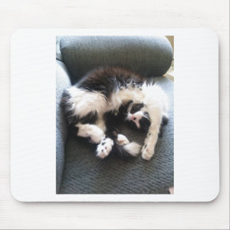 silly sleepy cat mouse pad