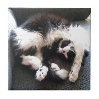 silly sleepy cat small square tile