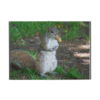Silly Squirrel Covers For iPad Mini