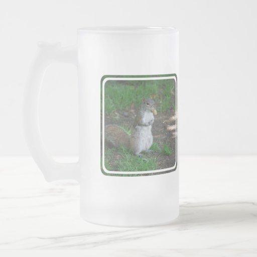 Silly Squirrel Mugs