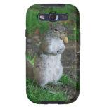 Silly Squirrel Samsung Galaxy SIII Cases