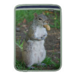 Silly Squirrel Sleeves For MacBook Air