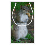 Silly Squirrel Small Gift Bag
