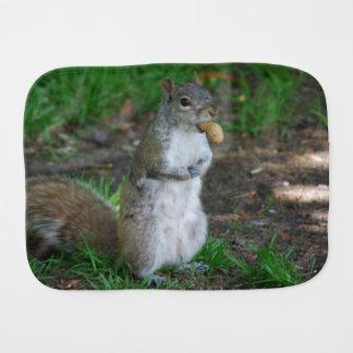 Silly Squirrel Baby Burp Cloth