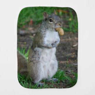 Silly Squirrel Burp Cloth