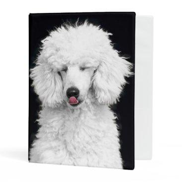 McTiffany Tiffany Aqua Silly White Poodle Mini Binder