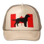 silo Canadian-Flag.png del labrador retriever Gorras