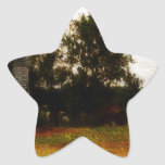 Silos de Mississippi Calcomania Forma De Estrella Personalizadas