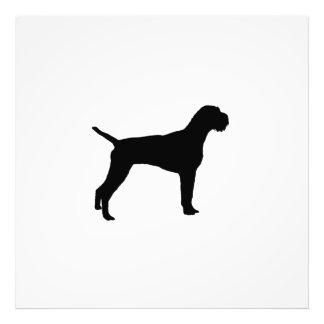 Silueta alambre-haired alemana del perro del cojinete