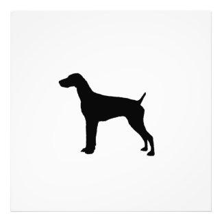 Silueta alemana del perro del indicador de pelo fotografías