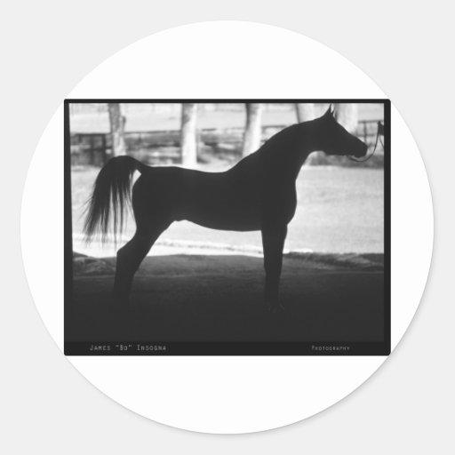 Silueta árabe del caballo blanco y negro pegatina redonda