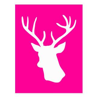Silueta blanca de la cabeza de los ciervos - rosa tarjetas postales