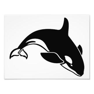 Silueta de la ballena fotografía