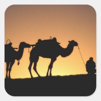 Silueta de la caravana del camello en el desierto pegatina cuadrada