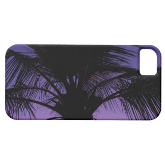 Silueta de la fronda de la palma iPhone 5 carcasa