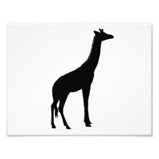 Silueta de la jirafa fotografía