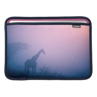 Silueta de la jirafa (Giraffa Camelopardalis) Fundas Para Macbook Air