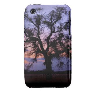 Silueta de la puesta del sol del roble funda para iPhone 3 de Case-Mate