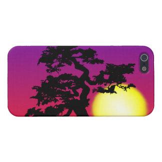 Silueta de los bonsais de la puesta del sol iPhone 5 fundas