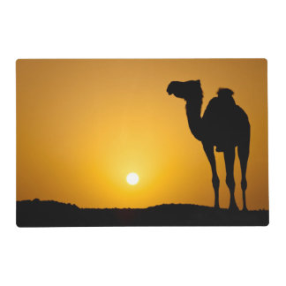 Silueta de un camello salvaje en la puesta del sol salvamanteles