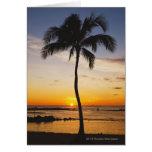 Silueta de una palmera por una puesta del sol anar tarjeta de felicitación