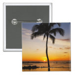 Silueta de una palmera por una puesta del sol pin cuadrado