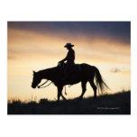 Silueta de una vaquera en su caballo contra postales