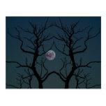 Silueta del árbol del claro de luna tarjetas postales