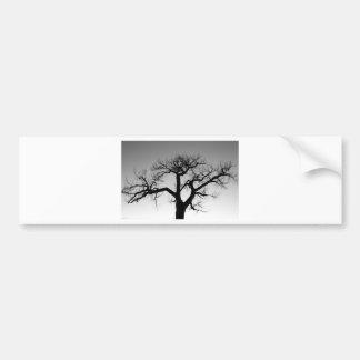 Silueta del árbol del invierno pegatina de parachoque