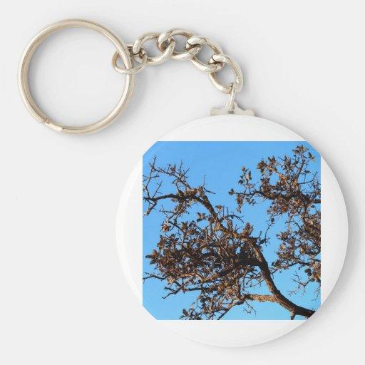 silueta del árbol llaveros